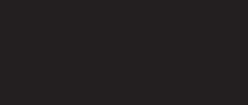 Raseborg_logo_musta